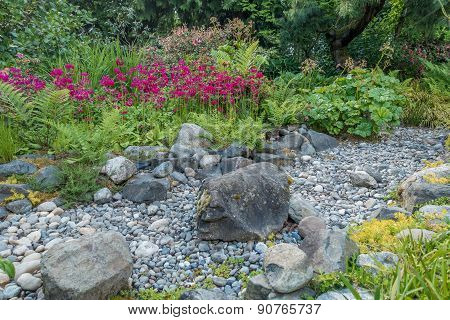Dry Stream Bed And Red Flowers