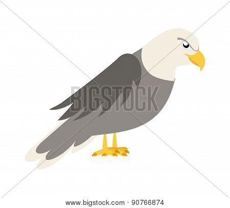 eagle design over white background vector illustration