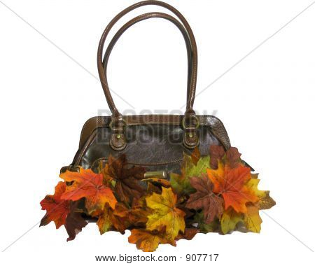 Accesorios de otoño