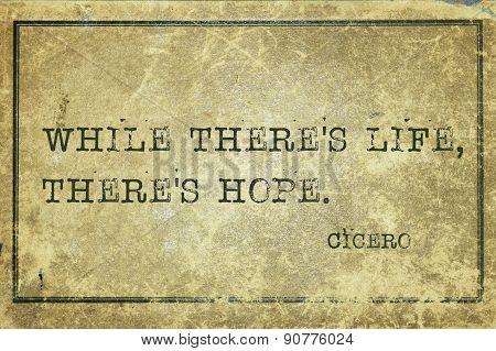 Hope Alive Cicero
