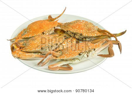 Streamed Crab Isolated On White Background
