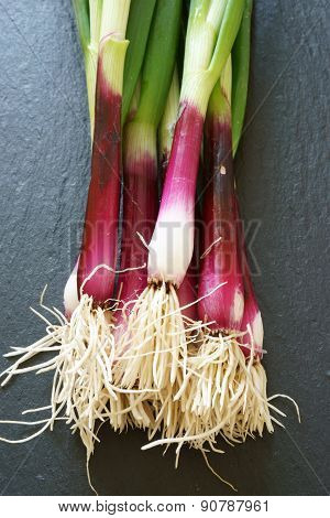 Fresh Red Spring Onions