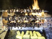 pic of spit-roast  - birds turning on a spit and cook slowly to the heat of the flame in the fireplace - JPG
