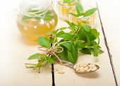 stock photo of pine nut  - Arab traditional style mint and pine nuts tea called at tay - JPG