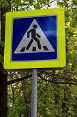 picture of pedestrian crossing  - road sign pedestrian crossing in the foliage - JPG