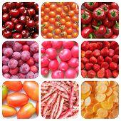 stock photo of prunes  - Vegetarian food collage - JPG