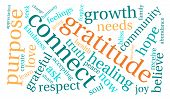 image of gratitude  - Gratitude word coud on a white background - JPG