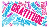 pic of gratitude  - Gratitude word coud on a white background - JPG