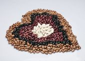 picture of pinto  - White beans - JPG