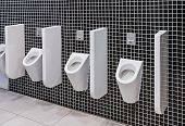 stock photo of urination  - urinals in a public toilet - JPG