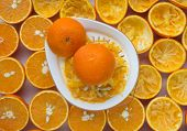 picture of juicer  - oranges and manual juicer on the table - JPG