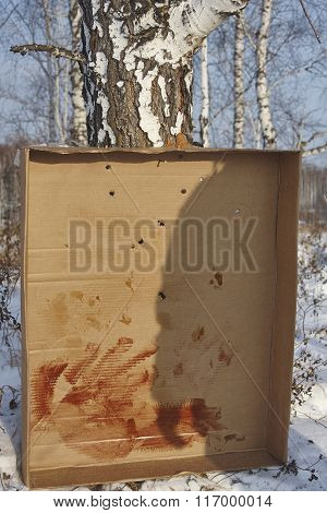 Paper with bullet holes 16 calibre birch men shadow dry blood on paper