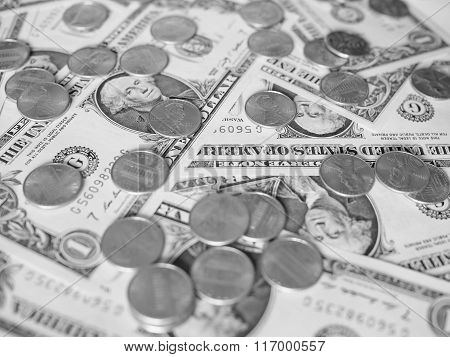 Black And White Dollar Coins And Notes