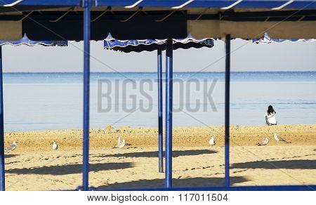 sea views, sandy beach, one girl
