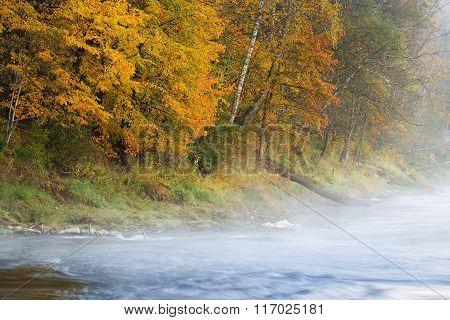 Autumn Gauja river in Sigulda, Latvia during fog