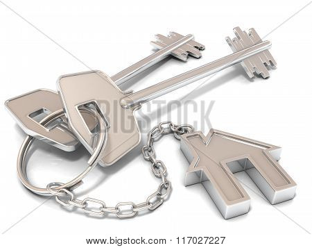 Two house door keys and house key-chain