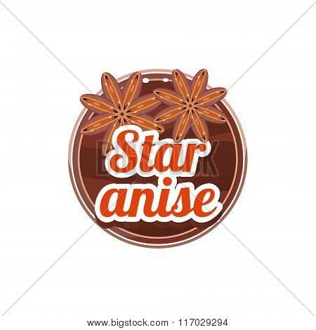 Star Anise Spice. Vector Illustration.