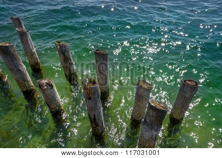 Old wooden posts in the water