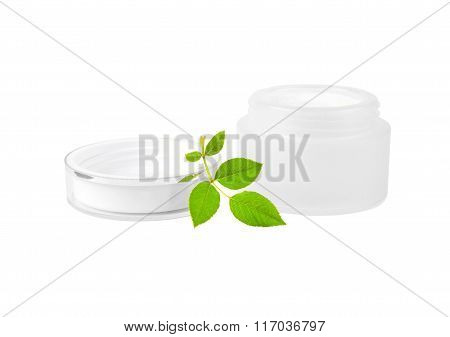 Cream can and green leaf