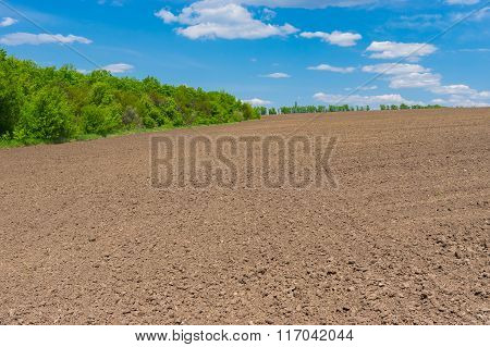 Agricultural field before young crops come up