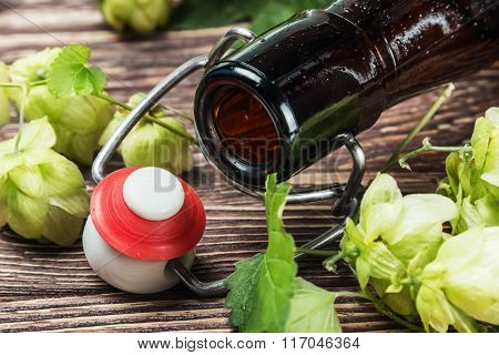 Empty Beer Bottles And Hop On Wooden Table