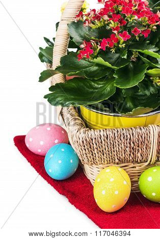 Colorful Easter Eggs And Spring Flower