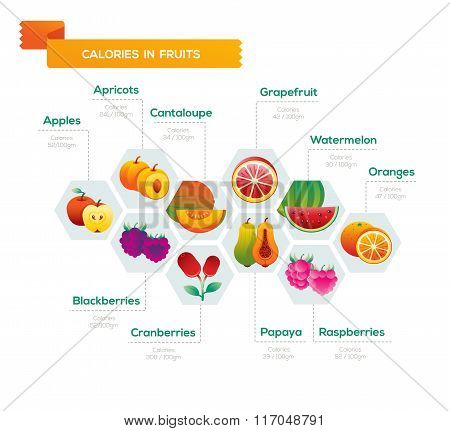 Fruit Infographic