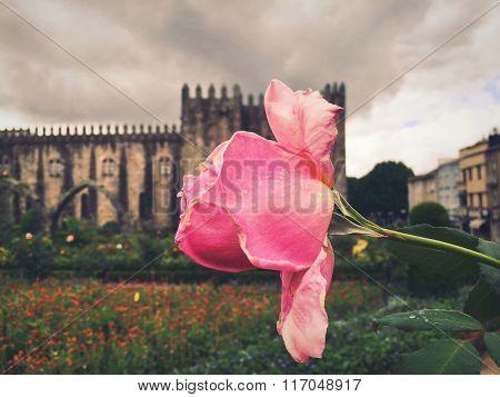 Flor y el castillo.