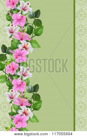 Vertical Flower Border, Pattern, Pattern, Floral Background,seamless. Flowers Of Hibiscus Pink And W