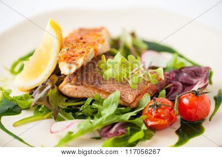 Modern Style Salmon Steak