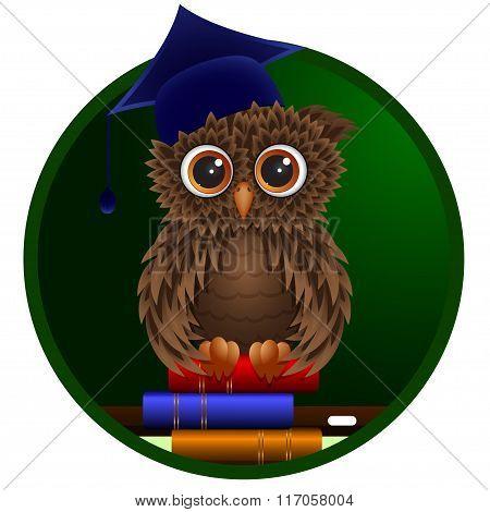 Smart Owl Sitting On Books.