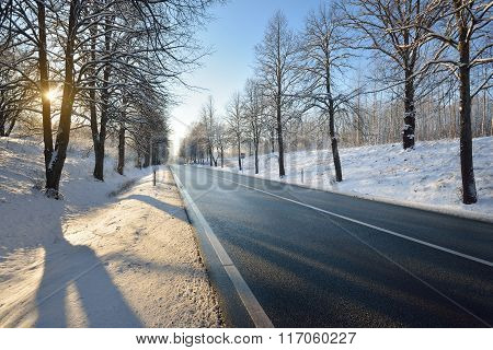 Winter Highway On A Sunny Day With Snowy Trees At Sunset