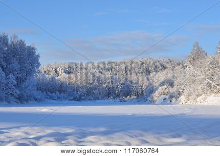 Frozen Gauja River View Surrounded By Snowcovered Deciduous Trees. Sigulda, Latvia