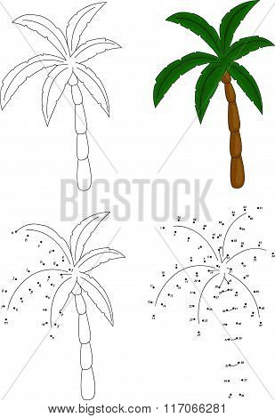 Cartoon Palm Tree. Vector Illustration. Coloring And Dot To Dot Game For Kids