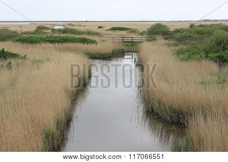 Ditch At The Rantumbecken On The Island Of Sylt