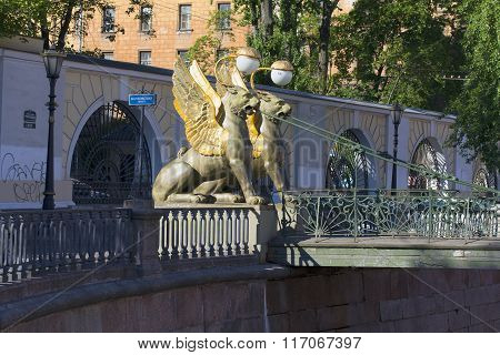 View of the sculpture of griffins on the Bank bridge June morning. Saint-Petersburg