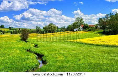 German Countryside Landscape With Creek And Yellow Canola Field