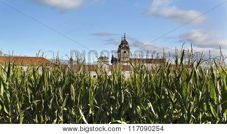 Maize Field And The Monastery