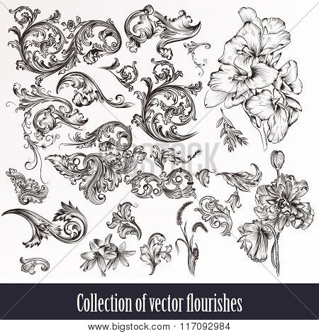 A Collection Or Set Of Vintage Styled Flourishes  Filigree Drawn