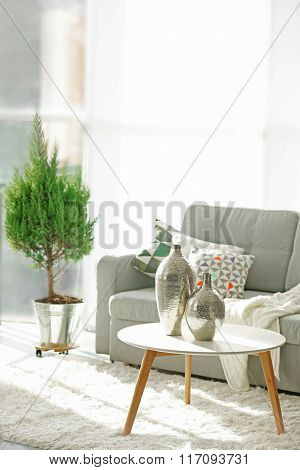 Room interior with sofa, table and little tree