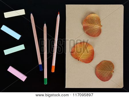 Notebook with coloured pencils, dry leaves and stickers on black table