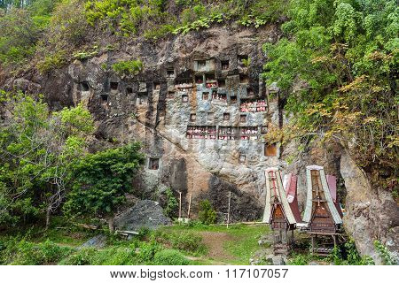 Lemo Is Cliffs Burial Site In Tana Toraja, South Sulawesi, Indonesia