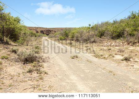 Dirt Road Leading Towards Rocky Hill In Arid Region