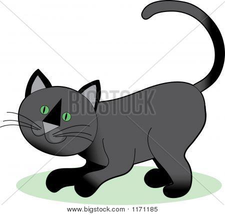 Cat Crouching Black