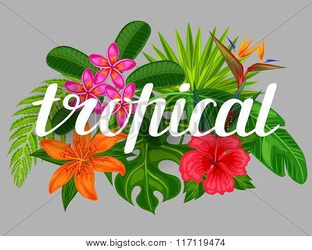 Background with stylized tropical plants, leaves and flowers. Image for advertising booklets, banner