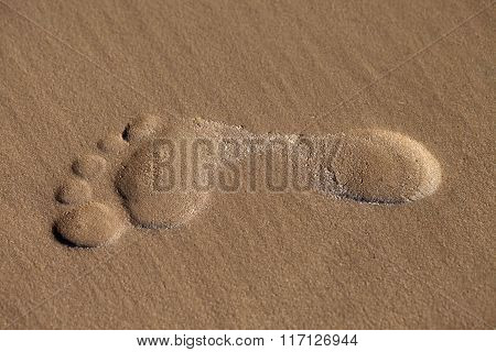 Footprint On Wet Sand