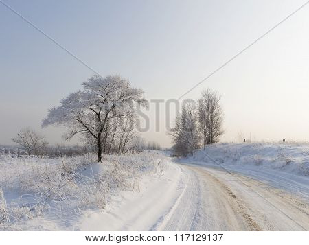 The Cold Winter In The Moscow Region