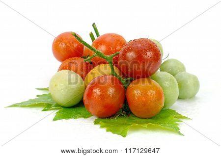 Fresh Tomatoes.