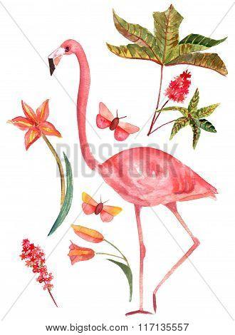 Set Of Vintage Style Watercolor Drawings: Flamingo, Butterflies, Plants