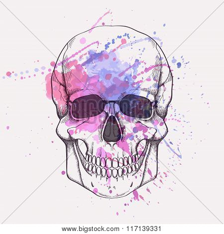 Vector Illustration Of Human Skull With Watercolor Splash
